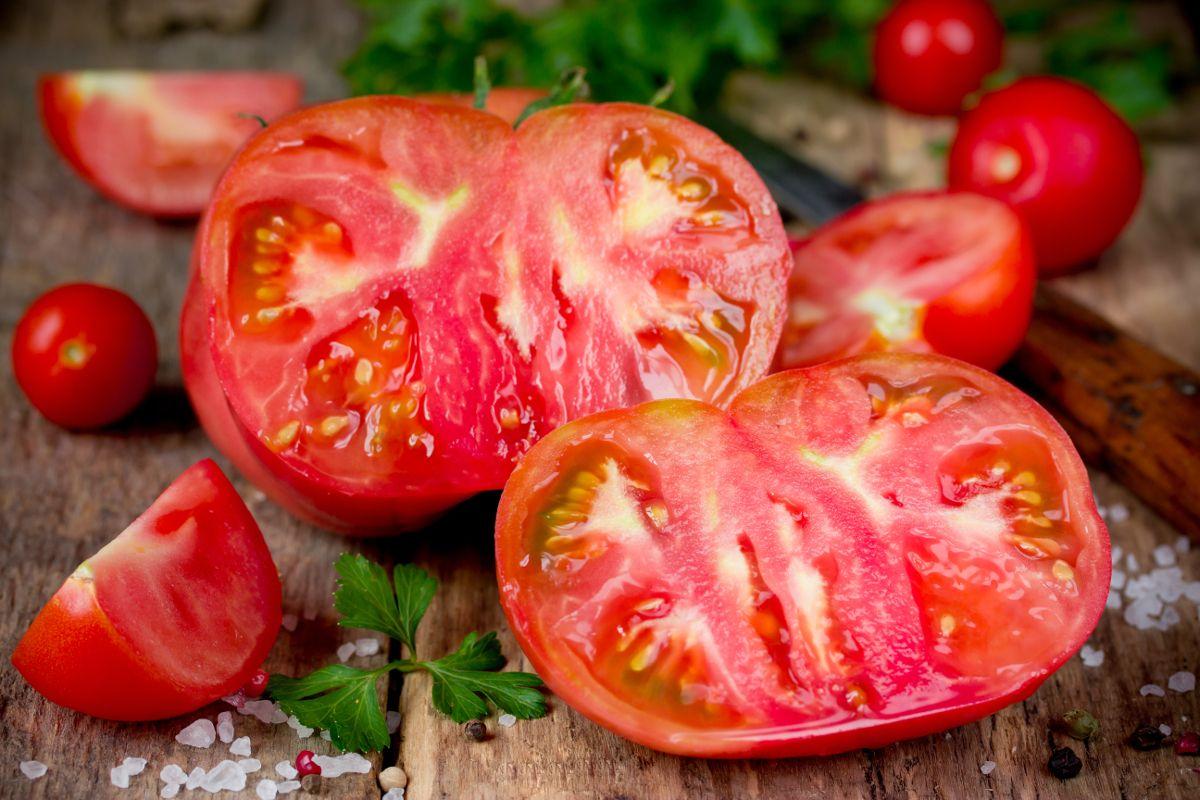 hortalizas y verduras ecológicas del campillo